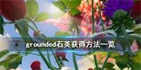 禁闭求生grounded石英获得方法一览