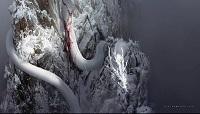 黑神话悟空游戏早期概念图公开:白蛇化龙