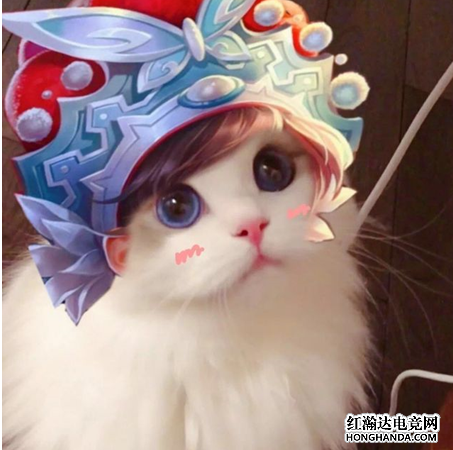 王者荣耀各英雄好看猫咪头像分享 虞姬