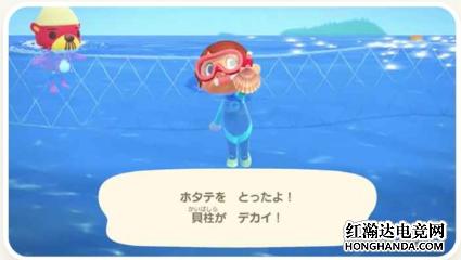 集合啦动物森友会人物怎样潜水?游泳及浮潜方法介绍